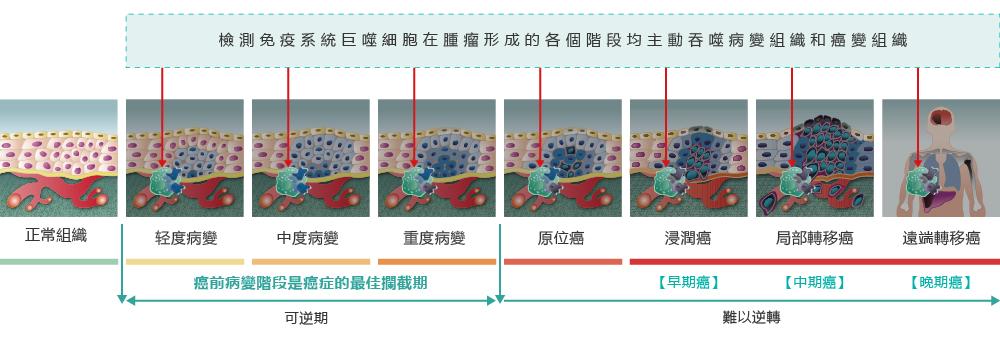 网站配图-繁-02-0620_画板 1